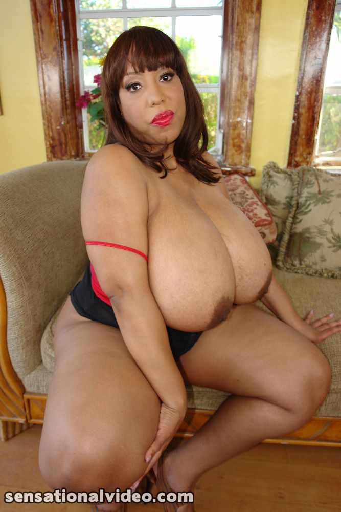 lesgalls spicytitties plumperpass gal515 pic 11